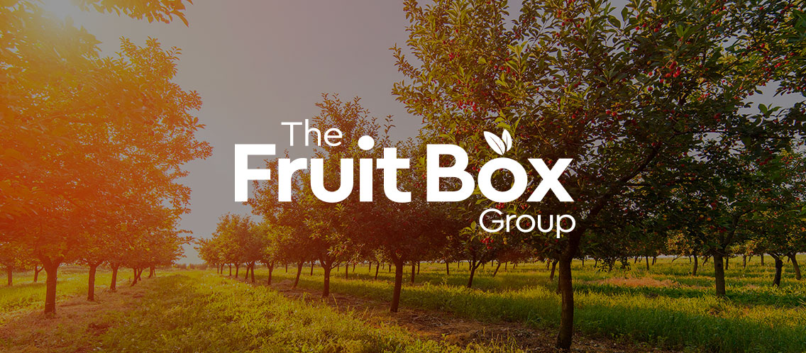 The FruitBox Group